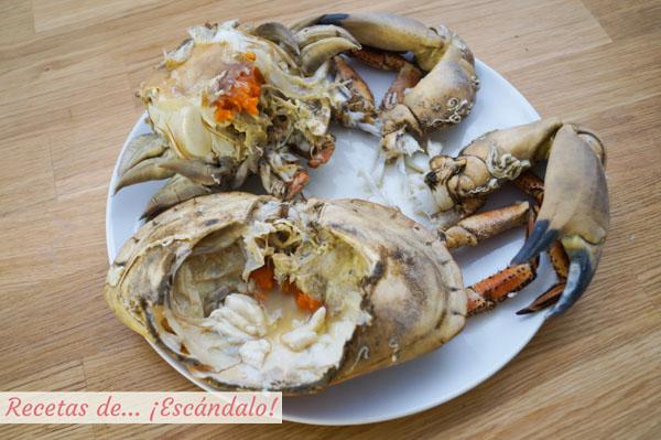 Cuerpo, caparazon y patas del buey de mar