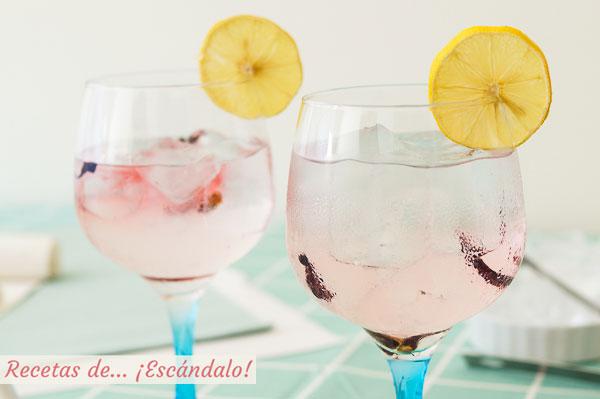 Receta y consejos para preparar el mejor gin tonic